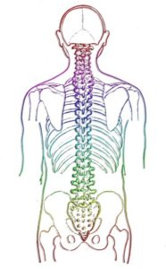 Solar Eclipse of Love is in Leo which rules the spinal column.